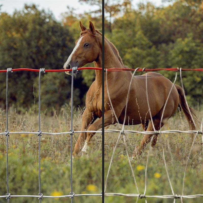 Clôtures pour chevaux
