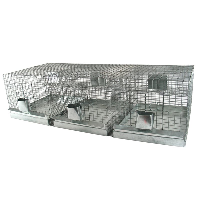 Cages à chinchillas