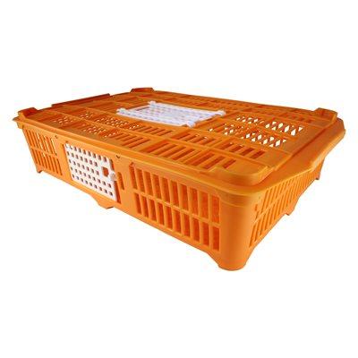 Cage de transport pour cailles