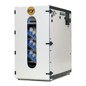 Incubateur électronique 110v