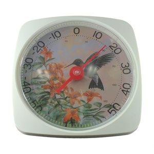 Thermomètre (colibri)