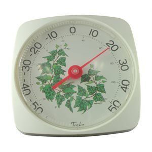 Thermomètre (lierre)