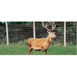 High-Tensile Fence For Deer And Wildlife (Cross Lock® Knot)
